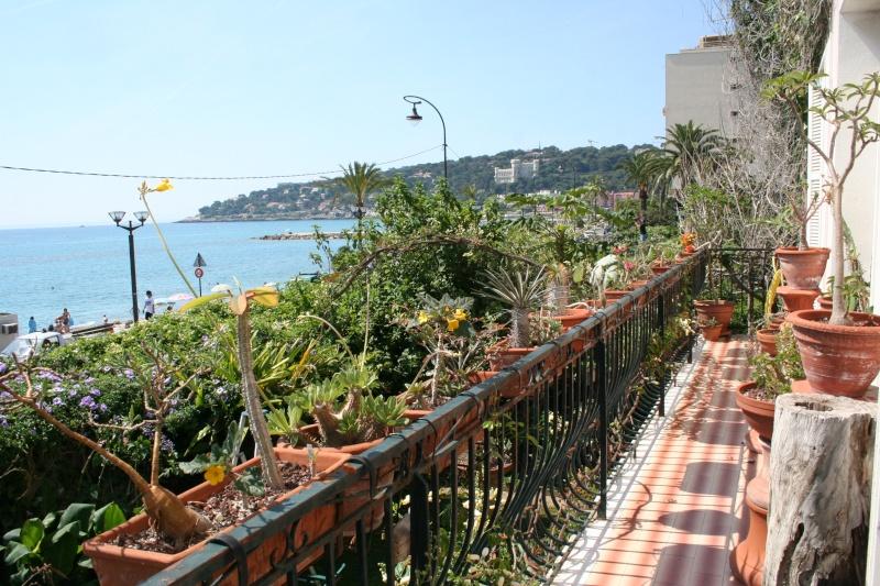idée jardinière pour balcon? Le_bal10