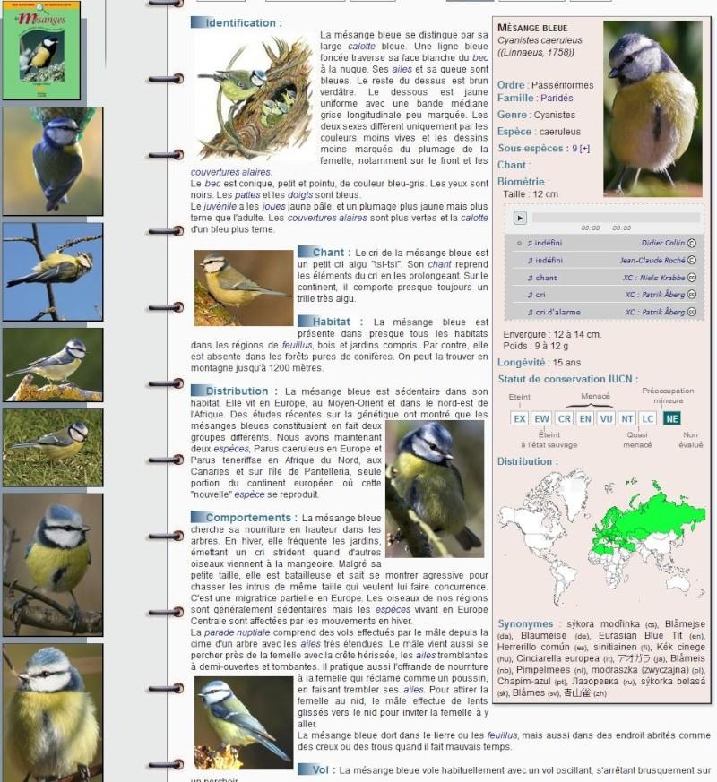 ENCYCLOPEDIE DES OISEAUX plus aucun secret sur les oiseaux 1_mesa10