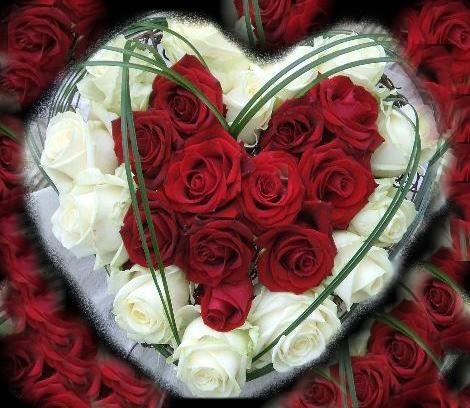 L'amour est une poésie. James_10