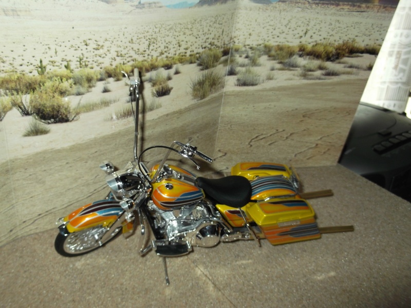 low rider bike Dscf0113