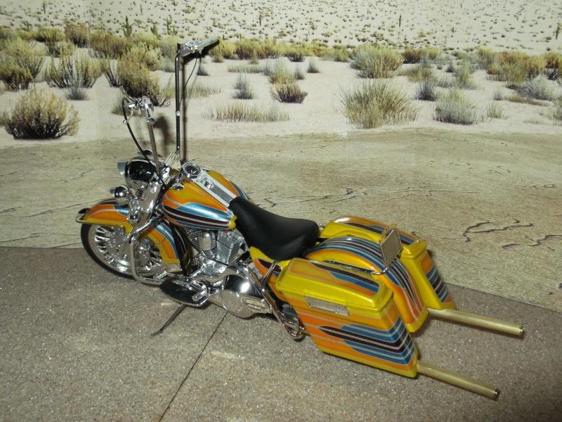 low rider bike Dscf0114