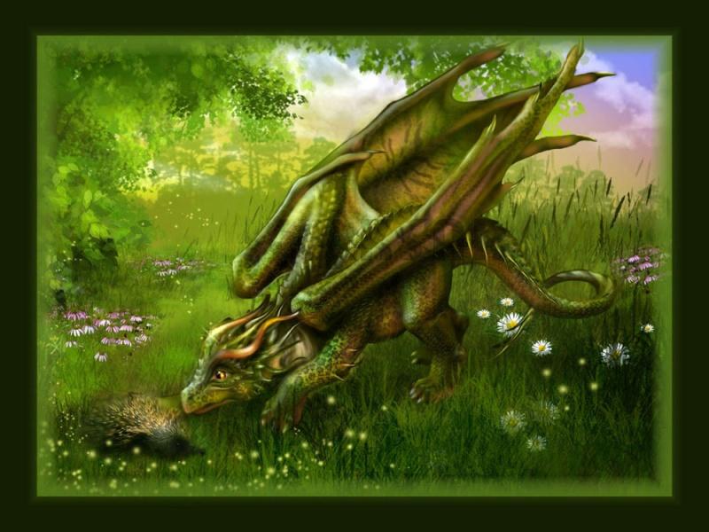 Les Druides d'Ersédomos Dragon13