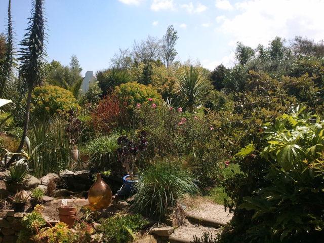 jardin Davarrée 2013-010