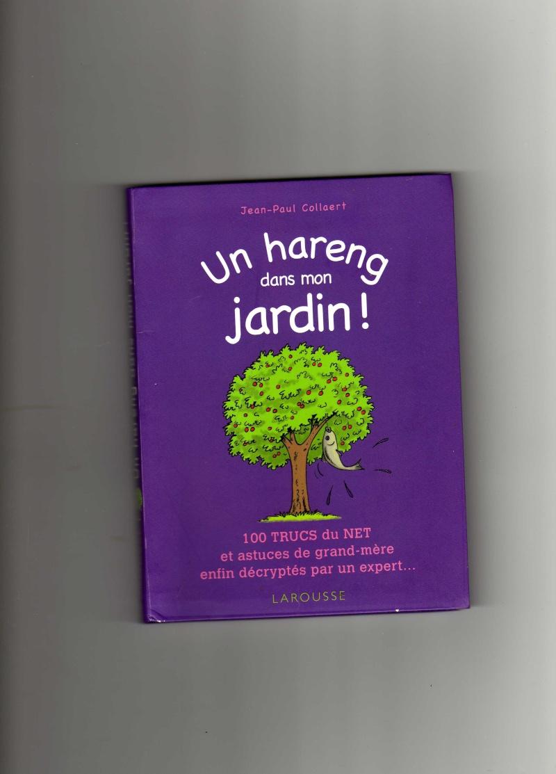 mon ptit jardin - Page 2 Img08710