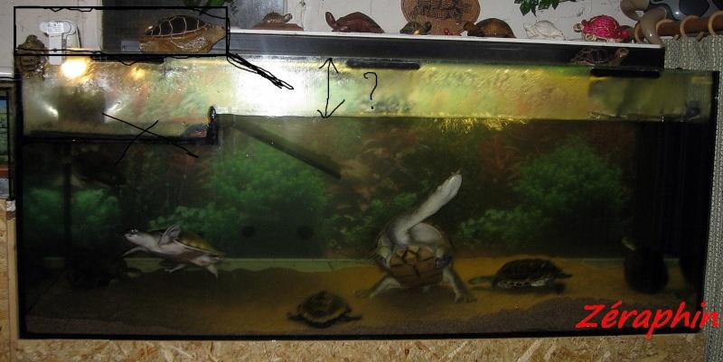Nouvel aquarium en cours d'installation  - Page 2 13avri10