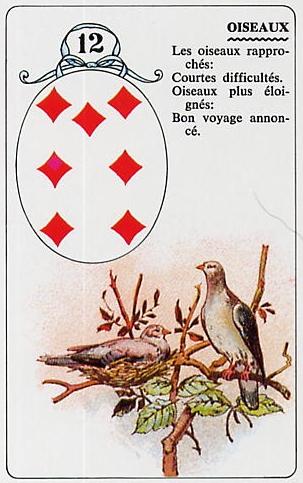 Le Petit Lenormand Oiseau10