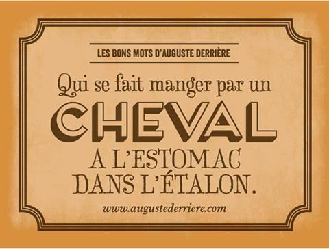Auguste Derrière philosophe Cheval10