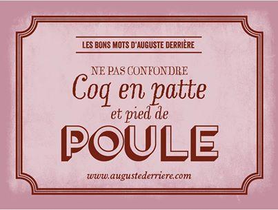 Auguste Derrière philosophe Coq10