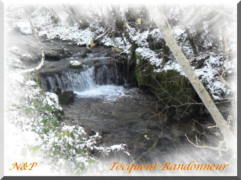 Un ru, un sou-bois, un peu de neige K800_s10