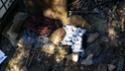 Feedback partie du 2 Mars à La Favède 20140310