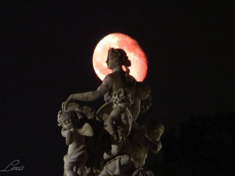 Nuit des musées le 17 mai 2014 Img_4024