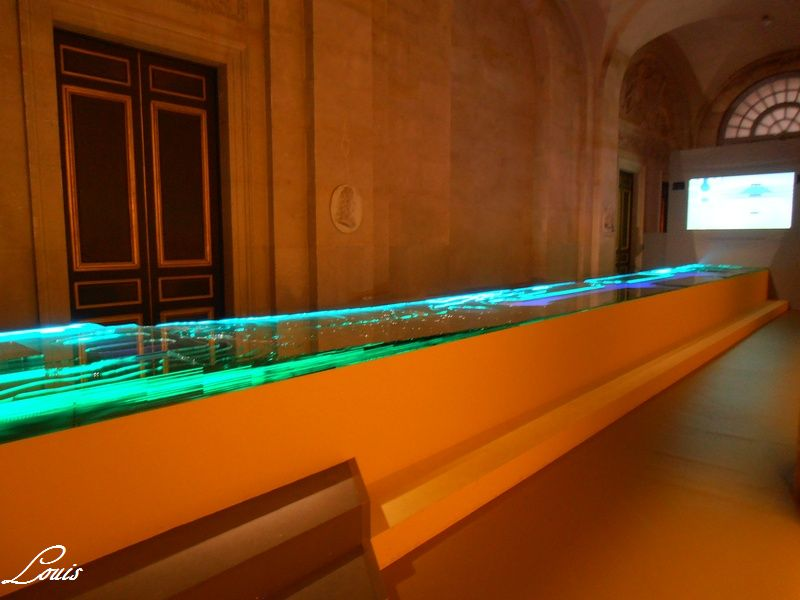 Exposition et Année André Le Nôtre à Versailles en 2013 Pa220619