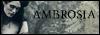 Ambrosia Bouton12