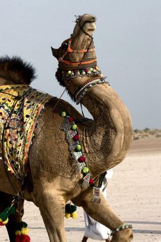 Dossier Février 2014 : Les Religions Préislamiques de la Péninsule Arabique Art-ta10