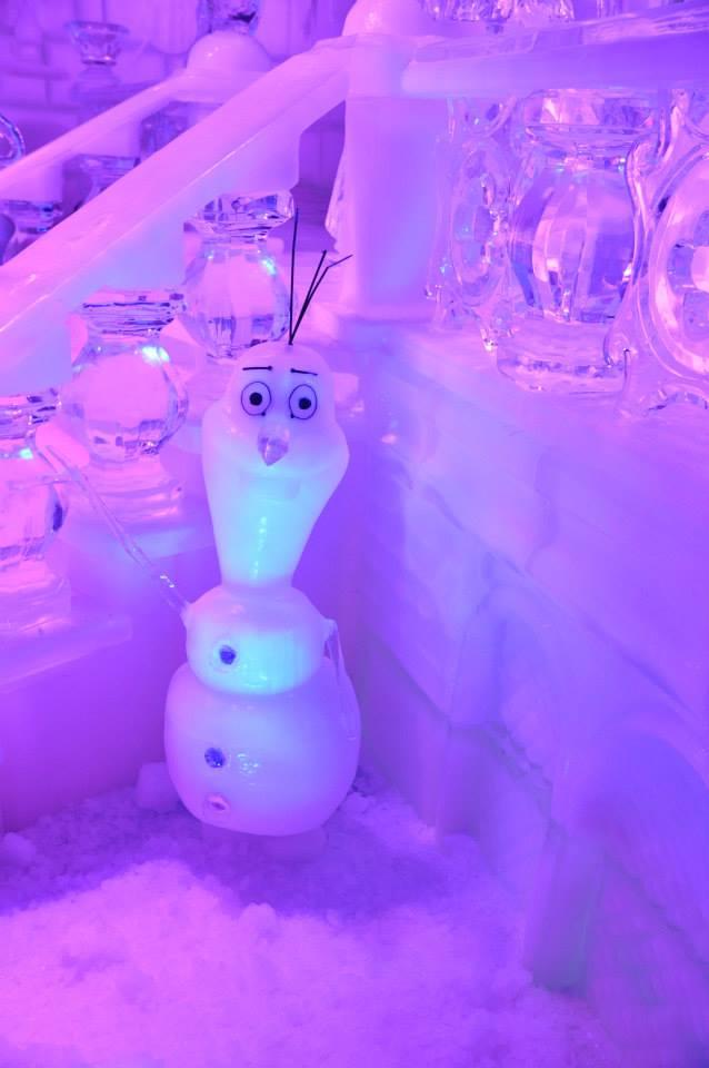 scuplture sur glaces disney bruges 2013 58154410