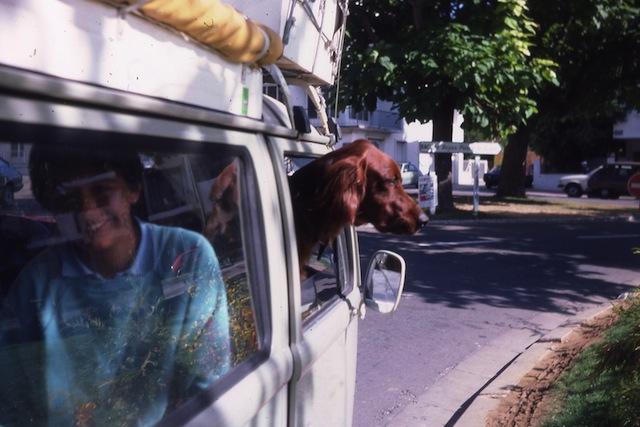 Les animaux c'est ici ! - Page 8 Olaron10