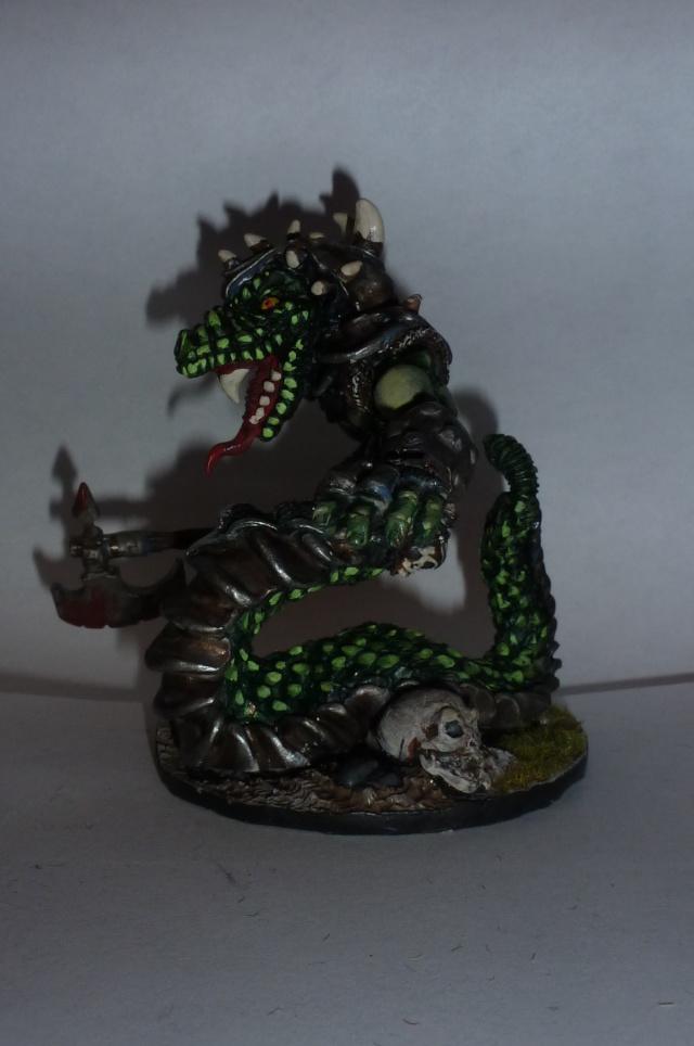 Figurines Fenryll P1030742