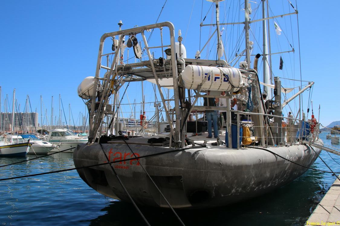 Voilier océanographique TARA 1616