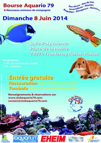 Bourse du club aquario79 le 8 juin 2014 Bourse12