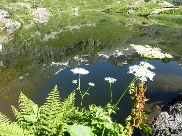 36 - Les reflets dans les flaques d'eau........ photos reçues !!! - Page 2 48664010