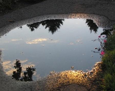 36 - Les reflets dans les flaques d'eau........ photos reçues !!! B_bmp11