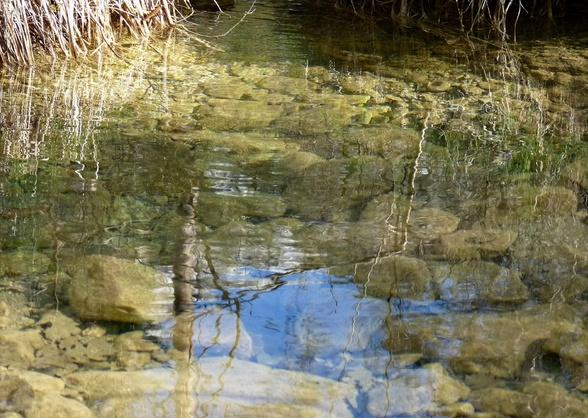 36 - Les reflets dans les flaques d'eau........ photos reçues !!! D_bmp10