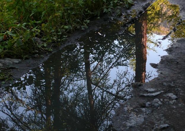 36 - Les reflets dans les flaques d'eau........ photos reçues !!! F_bmp10