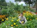 Photos de la nature, été 2008 - Page 4 2008_219
