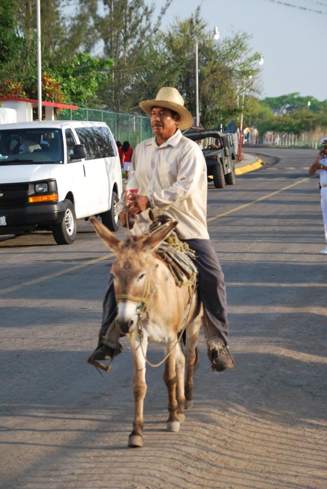 image du 18/03/2014 Mexiqu20