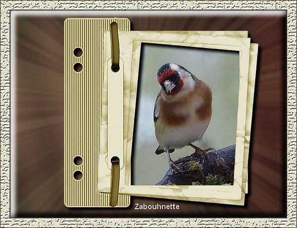Tableaux avec Photofiltre de Zabouh - Page 6 Chardo10