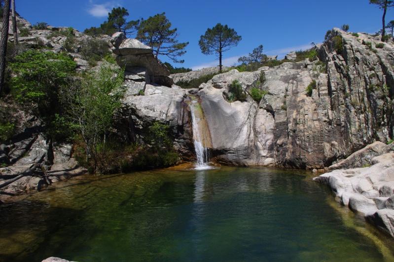 Corsica 2014 - Saison 4 ... & compte-rendu - Page 4 Imgp1346
