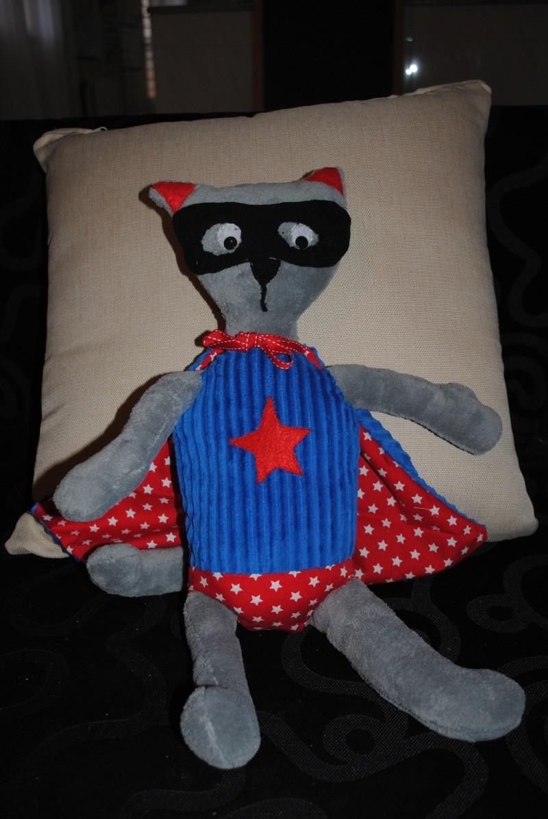 Diego le chat super héros Dsc_0013