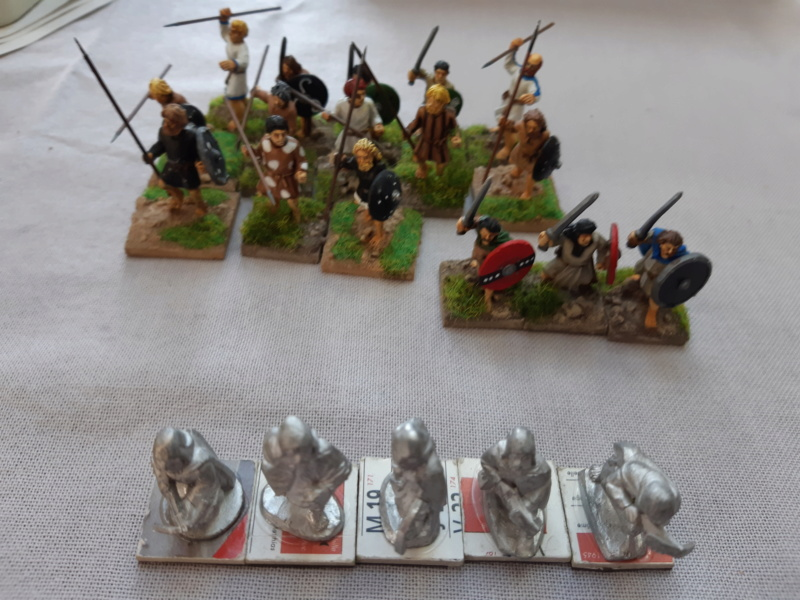 Pictes 28mm et normands 25mm 20190218