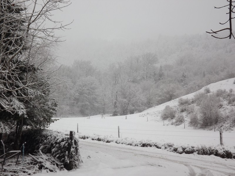 comment s'occuper l'hiver................... Dscf2021