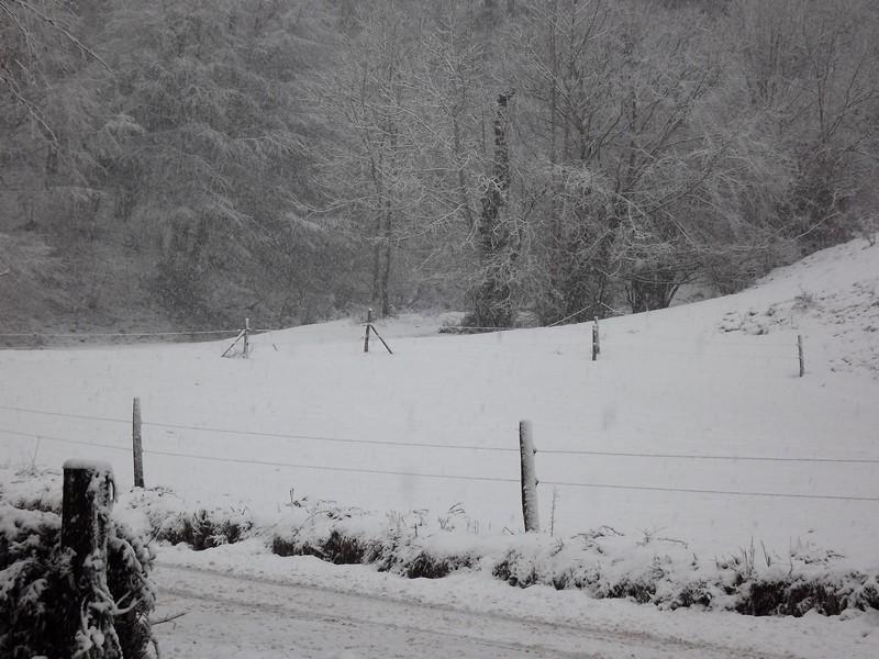 comment s'occuper l'hiver................... Dscf2022