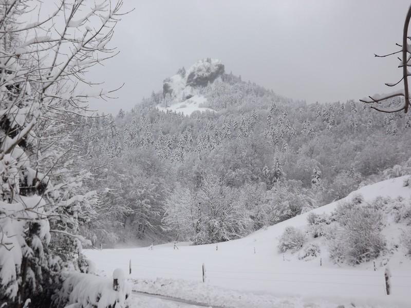 comment s'occuper l'hiver................... Dscf2026