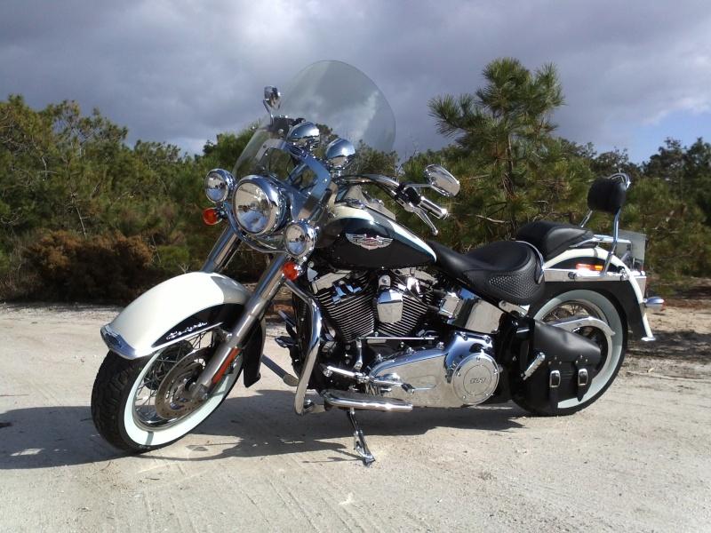 Combien de Softail sur le forum Passion-Harley - Page 12 Img41710