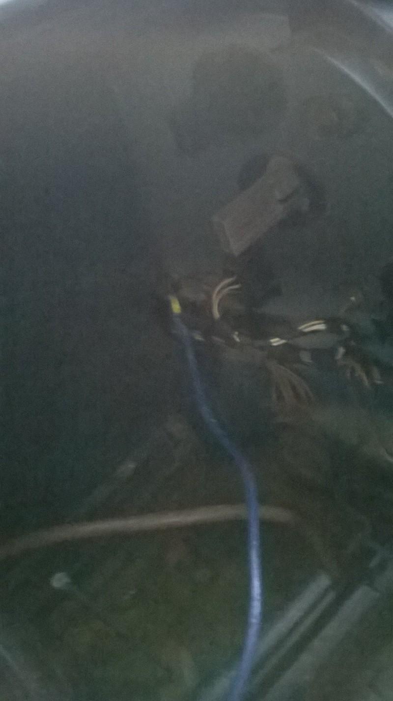 prise dans le coffre Wp_20120