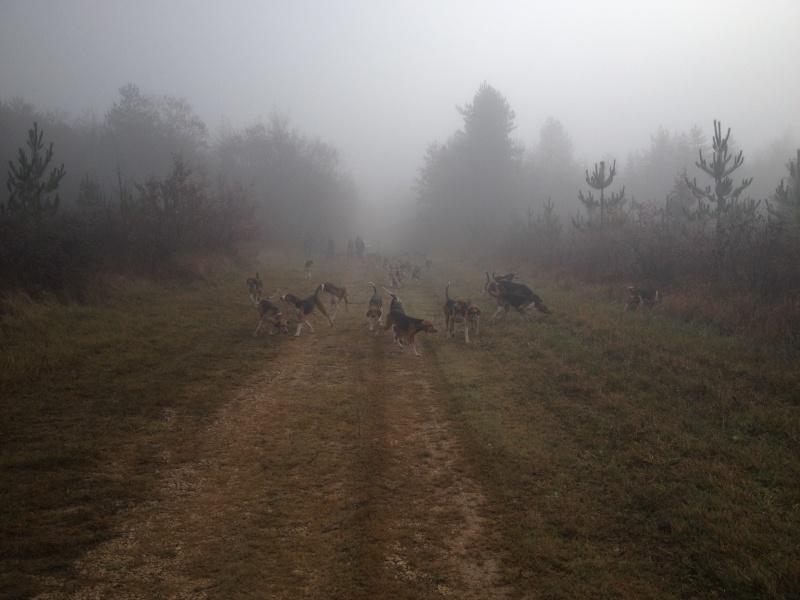 Compte rendu rallye du bois des chevreaux sainson 2013 2014 Img_6810