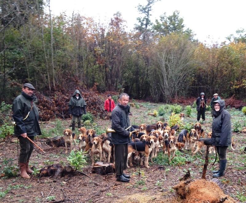 Compte rendu rallye du bois des chevreaux sainson 2013 2014 Saint_11