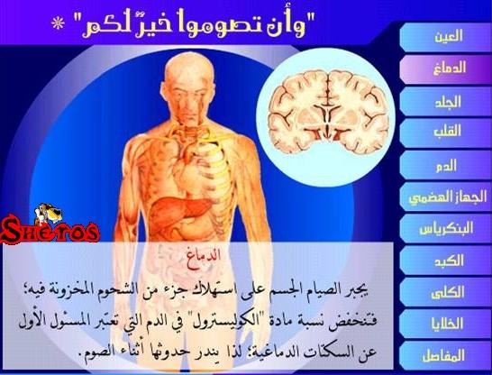 تأثير الصيام على أجزاء الجسم ...بالصور 55351110
