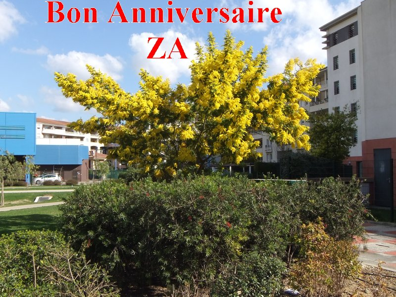 BON ANNIVERSAIRE FRANÇOISE dite ZAWIYA Anivza10