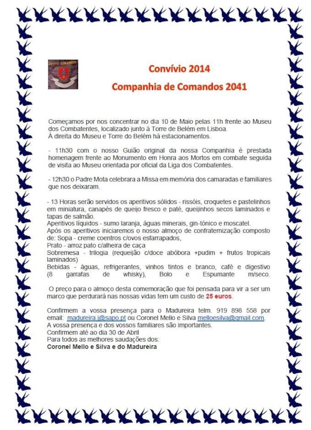 2041ª Companhia de Comandos - Lisboa - 10Mai2014 2041cc10