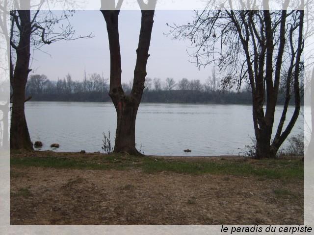 Rencontre du Paradis Du Carpiste ! Sd534139