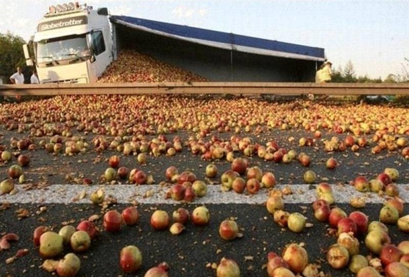 Qui veut de la compote de pommes ? Pm10