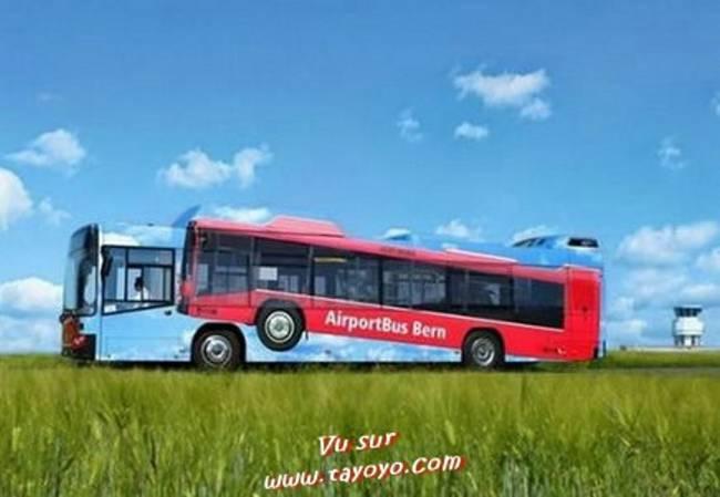 Livrée étonnante pour des bus . Public11