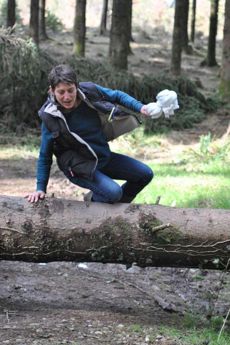Balade en forêt ... pour les Risèd 30082084