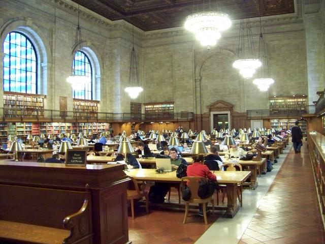 Les Grandes Bibliothèques du Monde Public10