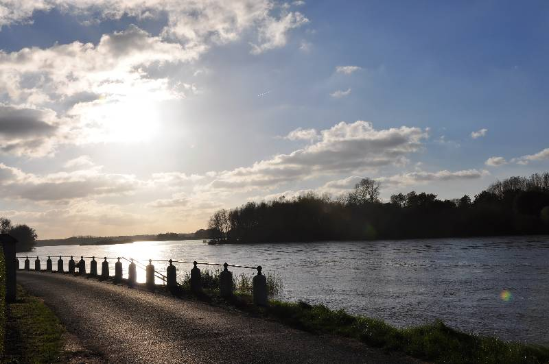 Ballade le long du Canal d'Orléans et Chateau Sully sur Loire 10_dsc10