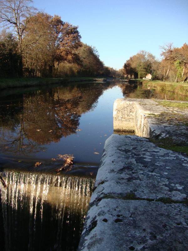 Ballade le long du Canal d'Orléans et Chateau Sully sur Loire 5_dsc010